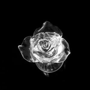 akril Roses